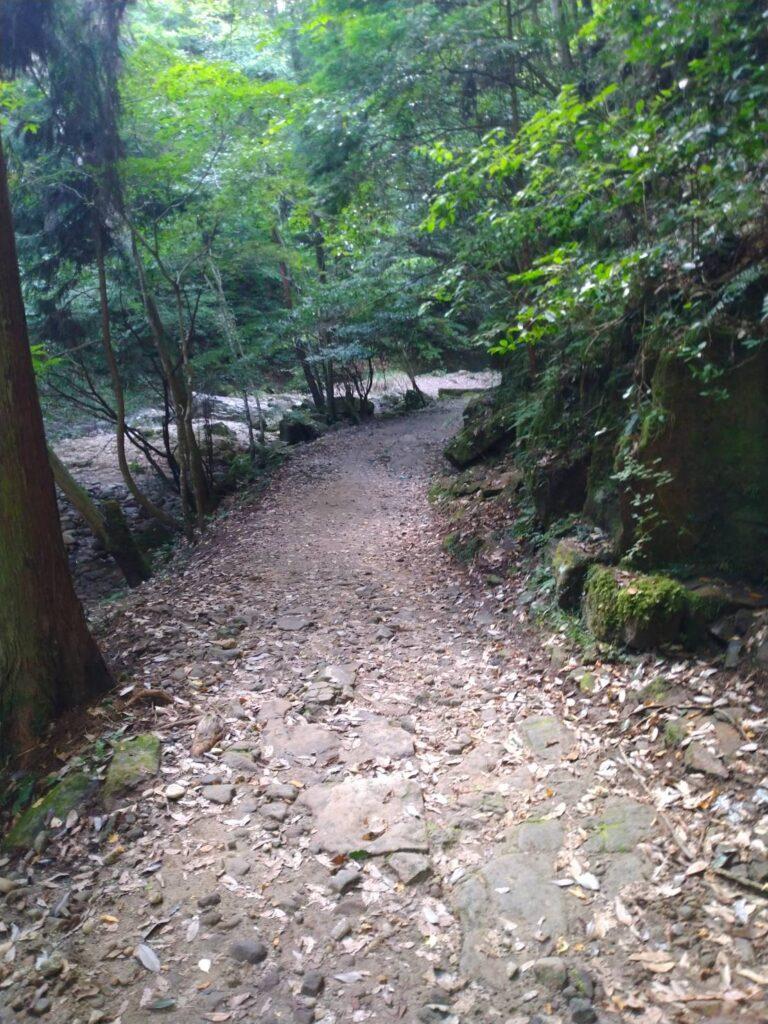 龍鎮神社の付近の画像8