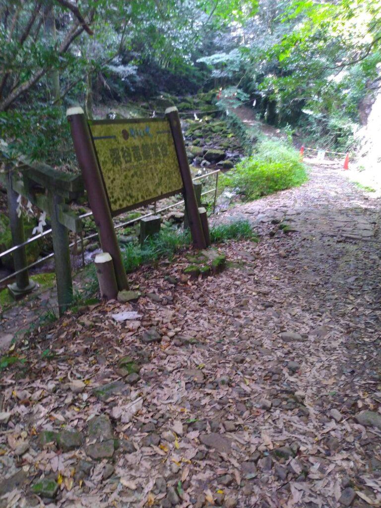 龍鎮神社の付近の画像12